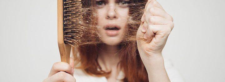 alopecia celulas madre